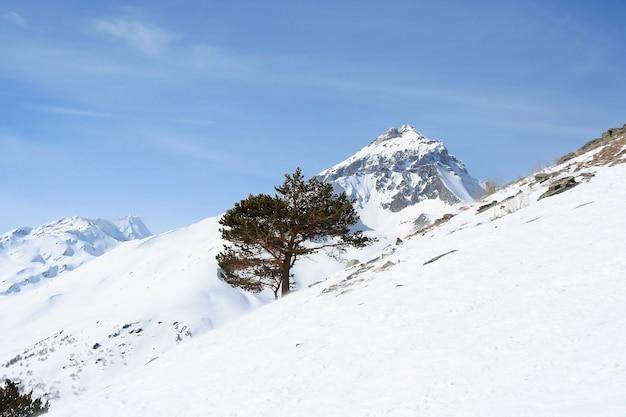In de bergen van dombai, kaukasus