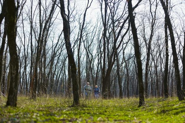 In een grote natuurwereld. leeftijd familie paar man en vrouw in toeristische outfit wandelen op groen gazon in de buurt van bomen in zonnige dag
