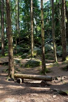 In het bos tegen de achtergrond van bomen staat een handgemaakte bank gemaakt van boomstammen verlicht door de zon