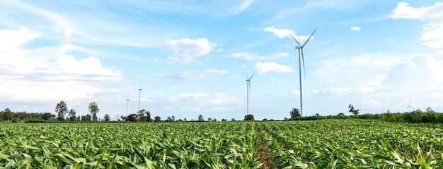 In landbouwgebieden staan grote windturbines