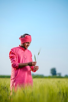 Indiase boer gewas plant in de hand houden op tarweveld op hemelachtergrond