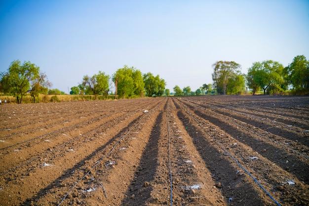Indiase boer of arbeider druppelbevloeiingspijp assembleert op landbouwgebied.