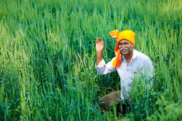 Indiase boer op gouden tarweveld
