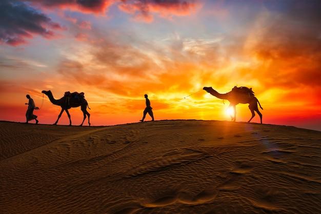 Indische kameelkameelbestuurder met kameelsilhouetten in duinen op zonsondergang. jaisalmer, rajasthan, india