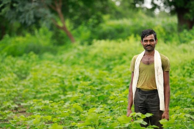 Indische landbouwer die zich in groen katoenen landbouwbedrijf bevindt