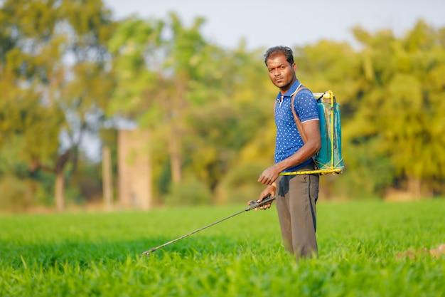 Indische landbouwers bespuitende pesticiden op groen tarwegebied