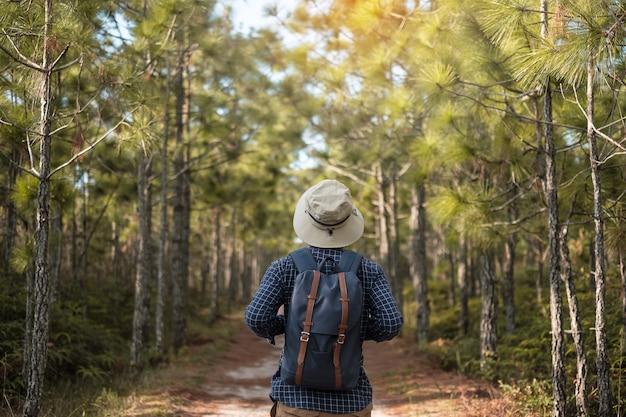 Individuele reiziger met een hoed en een rugzak die door het bos loopt