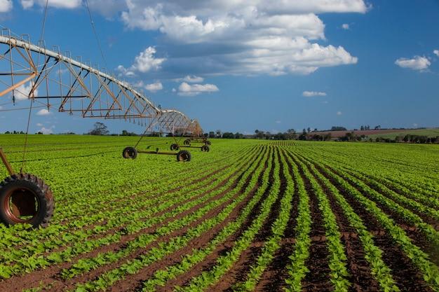 Industrieel irrigatieapparatuur op landbouwbedrijfgebied onder een blauwe hemel in brazilië. landbouw.