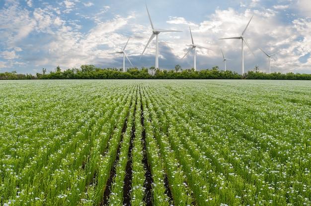 Industrieel landschap met windturbines in veld