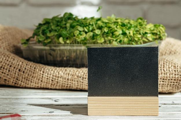 Ingemaakte micro groen op houten lijst dicht omhoog
