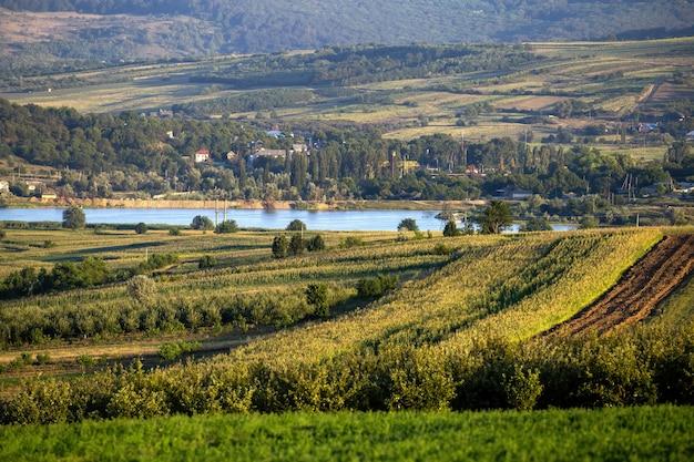 Ingezaaide velden, weelderig groen, stromende rivier in de verte en een dorp aan de kust in moldavië
