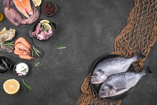 Ingrediënten en zeevruchten met een vis netto kopie ruimte