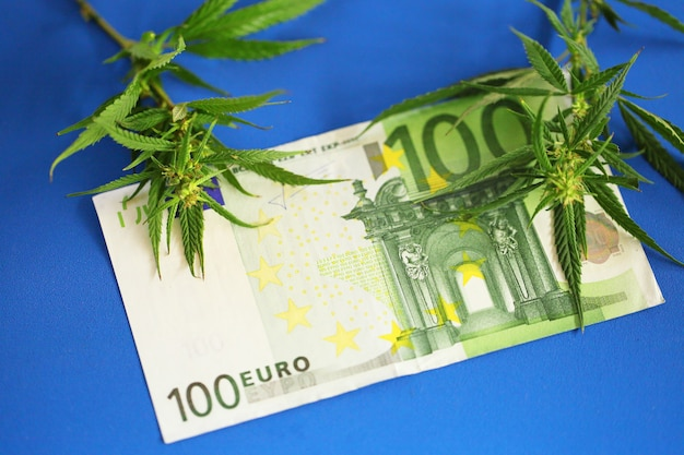 Inkomsten in de marihuana-industrie, eurobankbiljetten op cannabis, belastingen en marihuana. economie van de hennepindustrie.