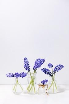 Inschrijving blauwe muscari bloemen in glazen kannen met water in rij over witte marmeren tafel met witte muur. kopieer ruimte. stilleven