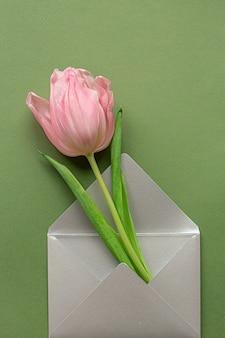 Inschrijving roze tulp en elegante grijze envelop in centrum van pastelkleur groene achtergrond. plat leggen. kopieer ruimte. plaats voor tekst. concept van internationale vrouwendag, moederdag, pasen. valentijnsdag liefdesdag