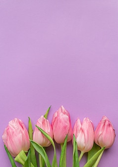 Inschrijving roze tulpen op de bodem van pastel violette achtergrond.