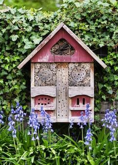 Insecten- of insectenhotel opgehangen aan een met klimop bedekte muur en blauwe boshyacinten bloemen in de lentetuin country