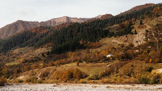 Inspirerend berglandschap, de hellingen zijn bedekt met planten en bomen, de herfstnatuur