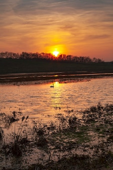 Inspirerende kijk op zonsopganglicht Gratis Foto