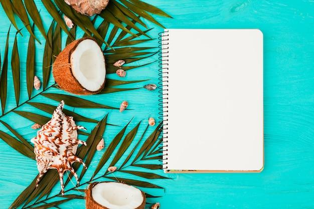 Installatiebladeren en kokosnoten dichtbij zeeschelpen met notitieboekje