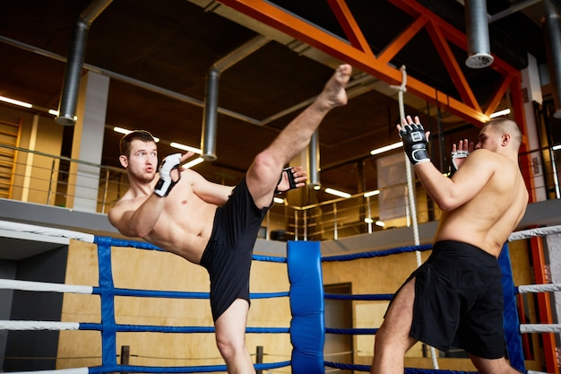 Intense strijd in boksring