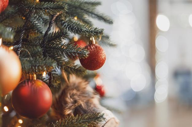 Intreepupil of wazig kerstboom lichten achtergrond bokeh