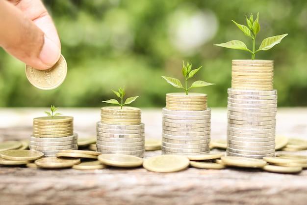 Investeerder houdt een gouden munt vast en laat deze vallen en plant groeit met spaargeld