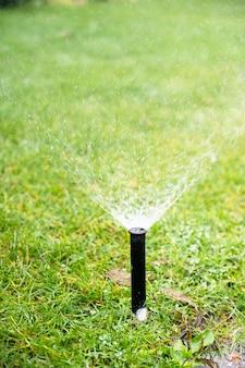 Irigeren, sproeikop die water op gras verspreidt