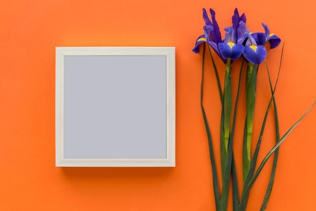Iris purpere bloem en zwarte omlijsting tegen heldere oranje achtergrond