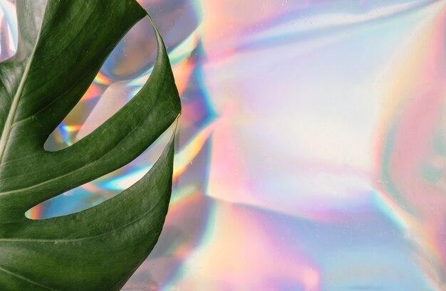 Iriserend. holografische abstracte zachte pastelkleurenachtergrond met monstera tropisch blad.