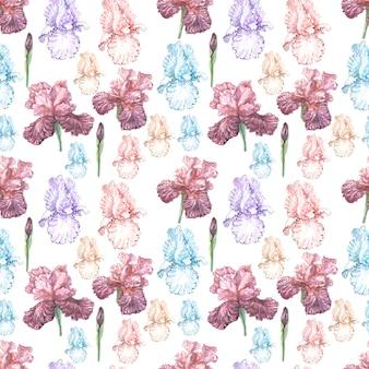 Irissen bloemen lente bloeiende aquarel illustratie hand getekende briefkaart achtergrond schets
