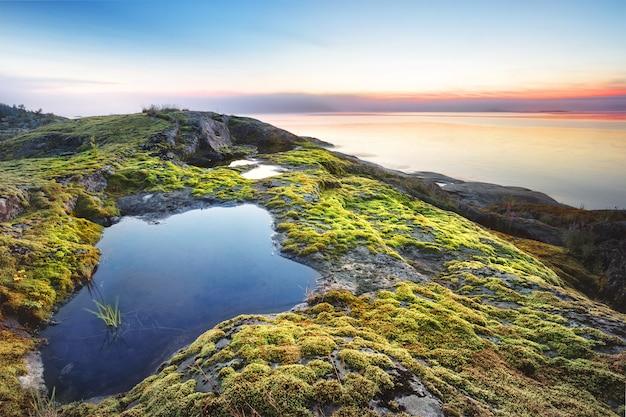 Island beach bedekt met mos