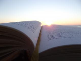 Isn t dit boek mooi