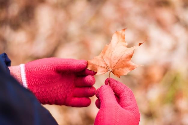 Isolement en eenzaamheid. handen in wollen handschoenen houden een gedroogd esdoornblad tegen de achtergrond van een herfstbos