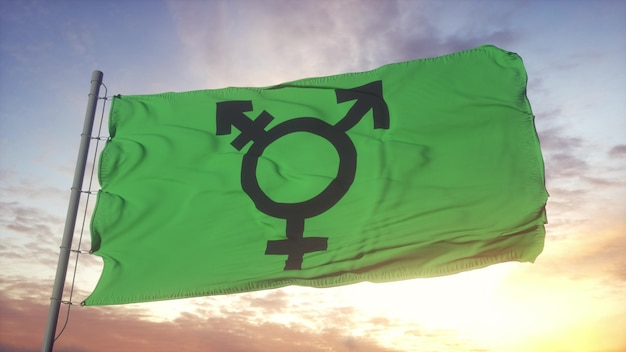 Israëlische transgender trots vlag zwaaien in de wind, lucht en zon achtergrond. 3d-rendering