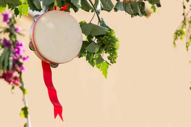 Italiaanse tamboerijn met wijnstok, tamboerijn voor pizzica en tarantella