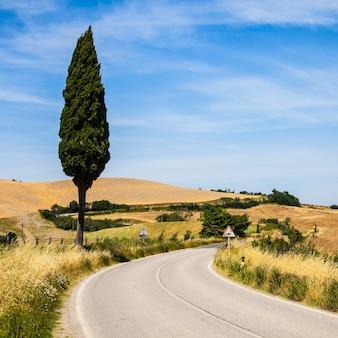 Italië, toscane; een weg in het midden van het land, dichtbij asciano