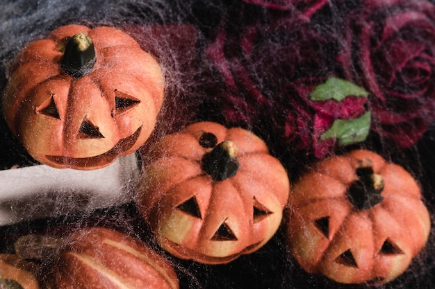 Jack-o'-lantaarns met rozen en spinnenweb