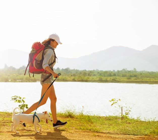 Jack russell hond wandelen samen met eigenaar een wandeling op het platteland.