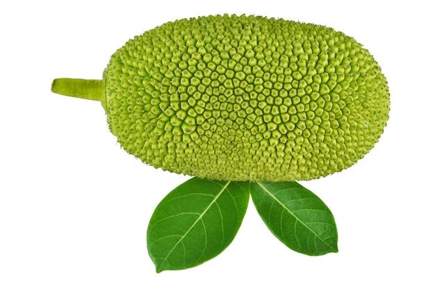 Jackfruit geïsoleerd op witte achtergrond