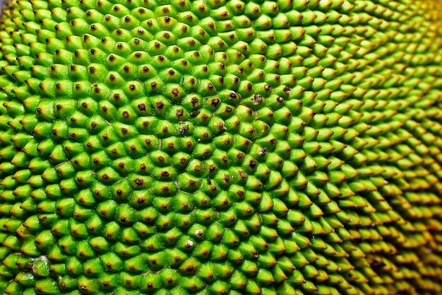 Jackfruit rijpe gele kleur