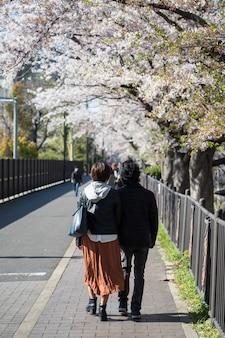 Japans paar geniet van sakura bloesem, nagoya