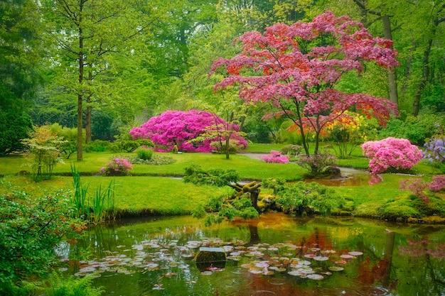 Japans tuinpark clingendael den haag nederland