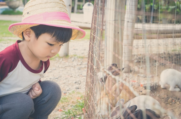 Japanse boerderij jongen voederen boerderij konijn konijntje.