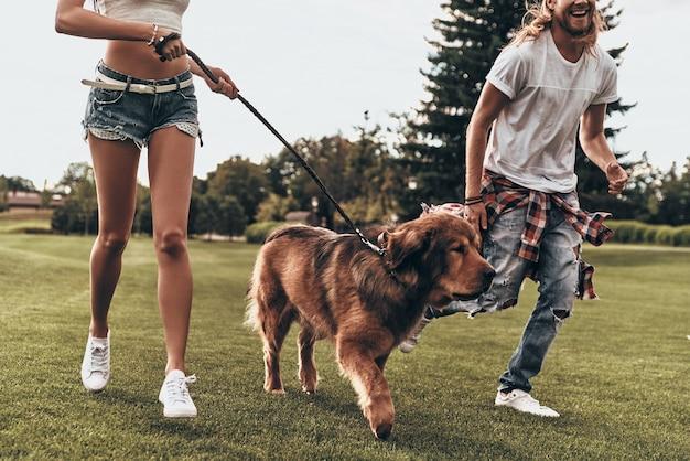 Je vrij en gelukkig voelen. close-up van een jong modern stel dat met hun hond speelt terwijl ze in het park rennen