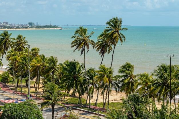 Joao pessoa paraiba brazilië kokospalmen op het strand van cabo branco