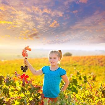 Jong geitjemeisje op het gebied van de de herfstwijngaard die rode druivenbos houden