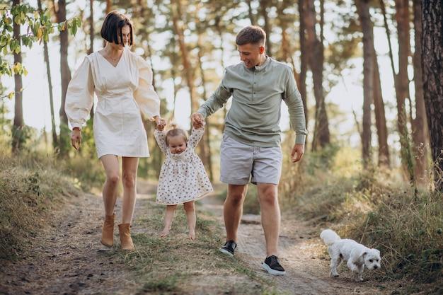 Jong gezin met schattige kleine dochter wandelen in het bos op de zonsondergang