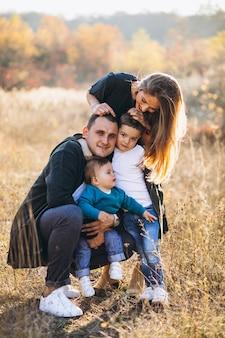 Jong gezin met twee zonen samen in park