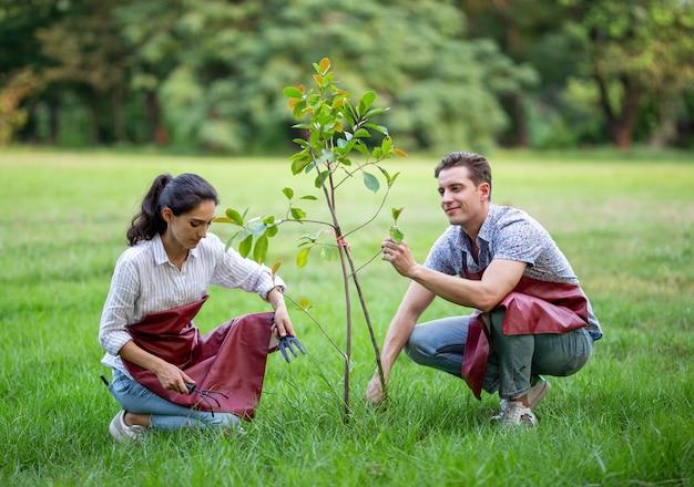 Jong koppel vrijwilligers die een nieuwe boom in het park planten